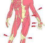 #Chronische pijn #Chronic Pain