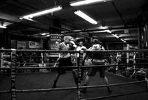 Active Seniors - The Boxer