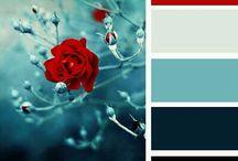 сочетания цвета