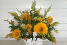 More Cut Flowers / Cut flowers from McAdams Farm.