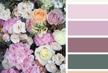 My color inspiration