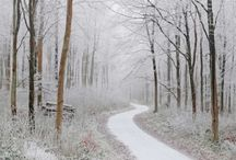 Winter Wonderland / Winter scenes - beautiful, pristine, serene, and fun.