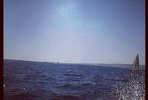 Marseille / Sea, Sun, Freedom et tout ce qui suit !