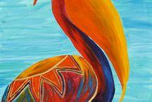 Birds / Colourful pelican