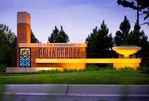 The Promenade Bolingbrook / Located in a small village south of Chicago, The Promenade Bolingbrook is a vibrant main street and life style center that has become the area's pedestrian-friendly gathering place for shopping, dining, and entertainment. In addition to establishing the overall architectural vision and creating the branding, identity, and wayfinding signage, RSM Design created a unique specialty graphics and local arts program to integrate into the architecture and landscape.