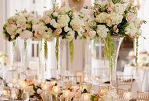 2015: Crawley-Harrison Wedding