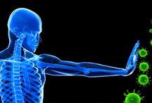 İmmünoloji ve Kanser / İmmünoterapi ve immünoterapötik aşı çalışmları hakkında...