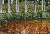 L'automne dans le 8e / Quelques clichés de l'arrondissement sous les feuilles mortes automnales...