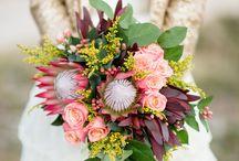 Flowers, Flowers & More Flowers