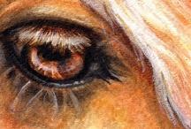 Eyes / by Diane Strand