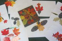 Fall Theme in Preschool / by Stacey Feehan
