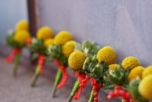 Wedding- Floral/Decor / by Anna Wright