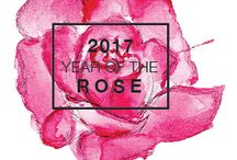 2017 Year of the Rose / The US National Flower first appeared around 35 million years ago and is part of the Rosaceae family which is very important for our food supply (think apples, strawberries, etc…). There are more than 150 species of Roses but very few are used in today's gardens. 2017 #YearoftheRose