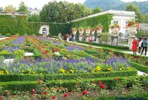 Austria / Photos from Austria