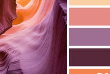 Color / by Cassandra Koller