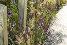 xavier en arieke tuin