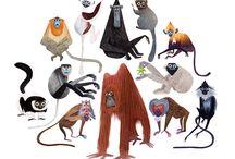 Character Design_Animals