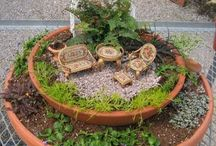 Fairy gardens / by Renee Fowler