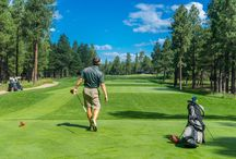 Golf Course Tips / Which golf courses to go to, whom to take, and advice topics such as beating the heat on the golf course are blog posts here.