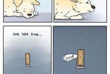 Honden (grapjes)