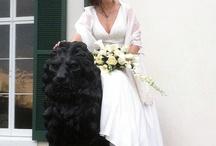 Real Bride Jen Wears The Cotton Bride / Real Bride Jen Wears The Cotton Bride  / by The Cotton Bride