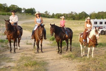 Tom and Traci Davis / Tom and Traci Davis owners of TnT Ranch and Tom Davis Horsemanship of Weatherford, TX www.TomTra.com