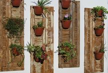 Janelas usadas decoração