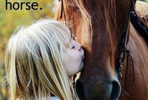 life is better with a horse♡