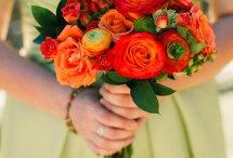 asanda,s wedding