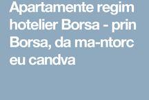 Apartamente regim hotelier Borsa