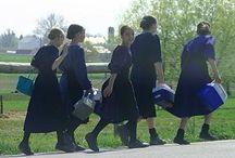 Amish / by Roberta Mooney
