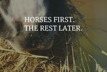 HORSES FIRST! THE REST LATER.