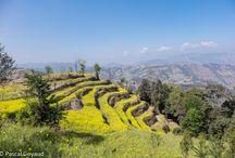 Voyage au Népal 2015 / Voyage de 15 jours au Népal de katmandou à Pokhara
