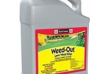Gardening - Weed & Moss Control