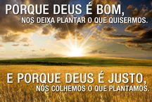 Palavras / Citações, Versículos, dicas de português etc.