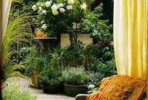 Kert, kertészet