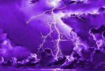 Purple Everything!!