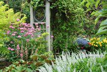 Garden Stuff / by Coral Egelund