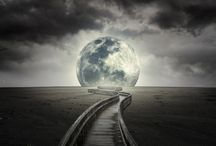 To the Moon / by Donna .