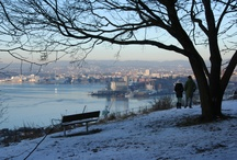Oslo, Winter