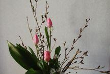 flower arrangement / ikebana:活花