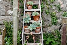 Creative Garden Ideas / Unusual succulent gardening, succulents, groovy plants ranch