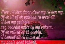 Bybe verse