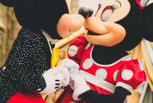 Disney World | Florida / Anything & Everything related to my new home state ~ Florida