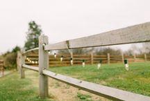 Michigan Farm Weddings / Michigan farm weddings by Ann Arbor wedding photographer, Nicole Haley