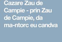 Cazare Zau de Campie