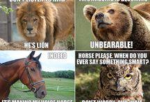Just animals..!!