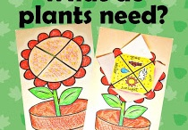 Grade 3 Science: Plant Growth / by Nicole Holloway