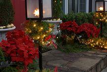 Ilumina tu Jardín para Navidad / Ideas para darle a tu jardín ese espíritu navideño que tanto gusta a los más pequeños. Decora iluminando el exterior de tu hogar.