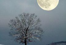 Côté Hiver / jolies photos sur l'hiver...